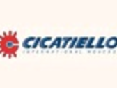 Cicatiello International Movers